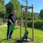 Baumspende für Nußlocher Friedhof - Eine Zerreiche