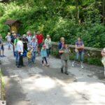 Wildbienen und andere Tiere im Leimener Wald - Wanderung mit Anita Kühner